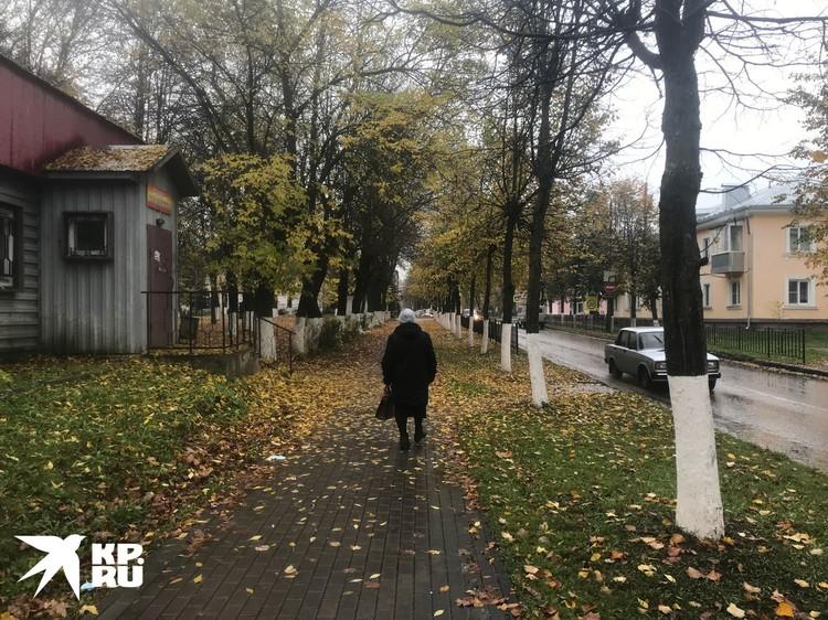 Городок Новосокольники, что под Великими Луками