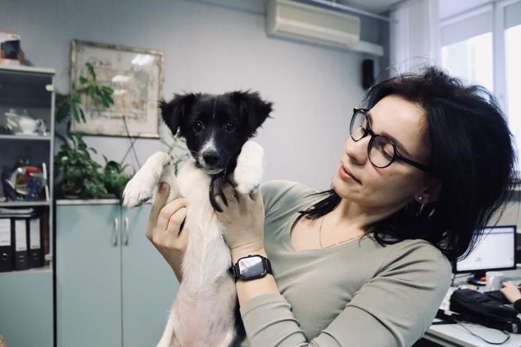 Юлия Островская с милым щенком. Фото: со страницы Юлии Островской в ВК