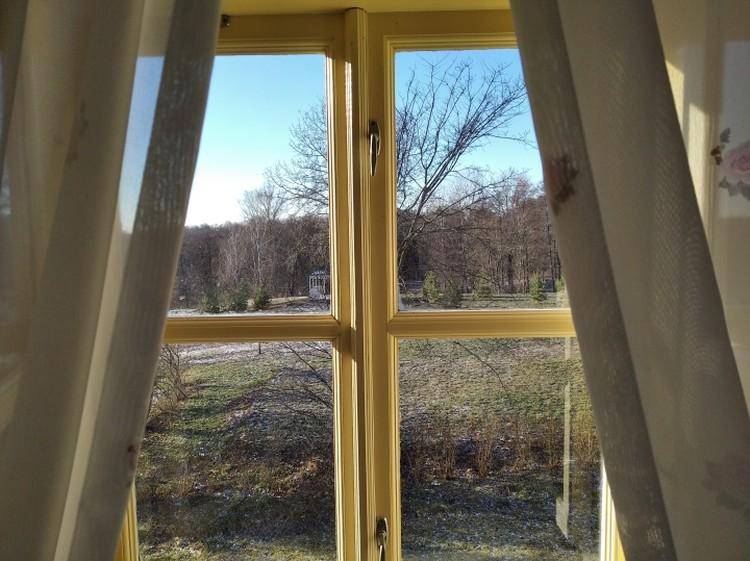 Окна парадных комнат выходят в парковую часть