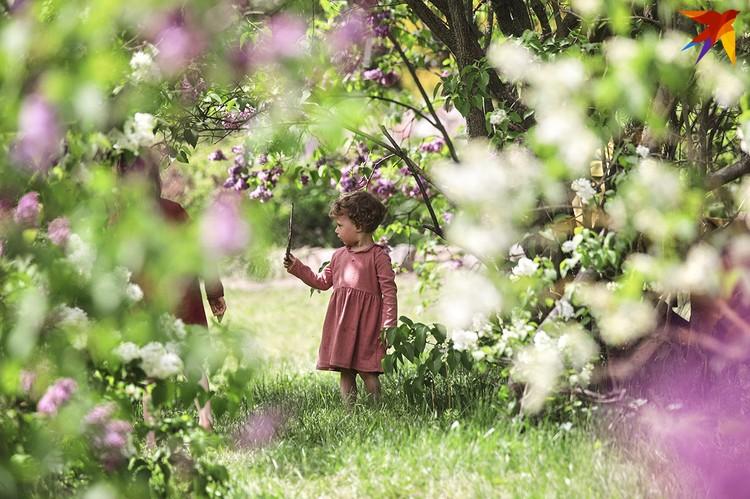 Девочка в Ботаническом саду в парке сирени.