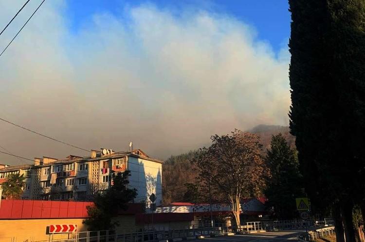 Весь день в районе пожара стоял смог. Фото: t.me/love_sochi