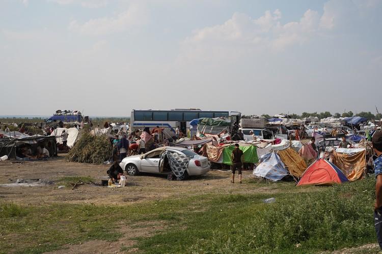 Лагерь на границе Самарской области и Казахстана