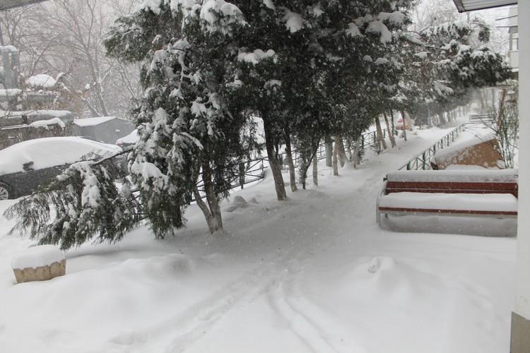 Снег идет с ночи - за это время насыпало уже около 15 сантиметров.