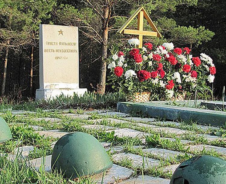 Ежегодно из полей извлекают и с почестями перезахоранивают десятки тысяч советских бойцов.