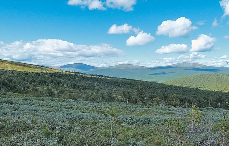 Наши спецкоры прошли по маршруту туристов-лыжников, погибших на Северном Урале с полвека назад при весьма загадочных обстоятельствах.