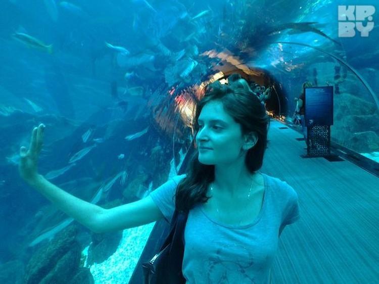 Сквозь аквариум проходит туннель