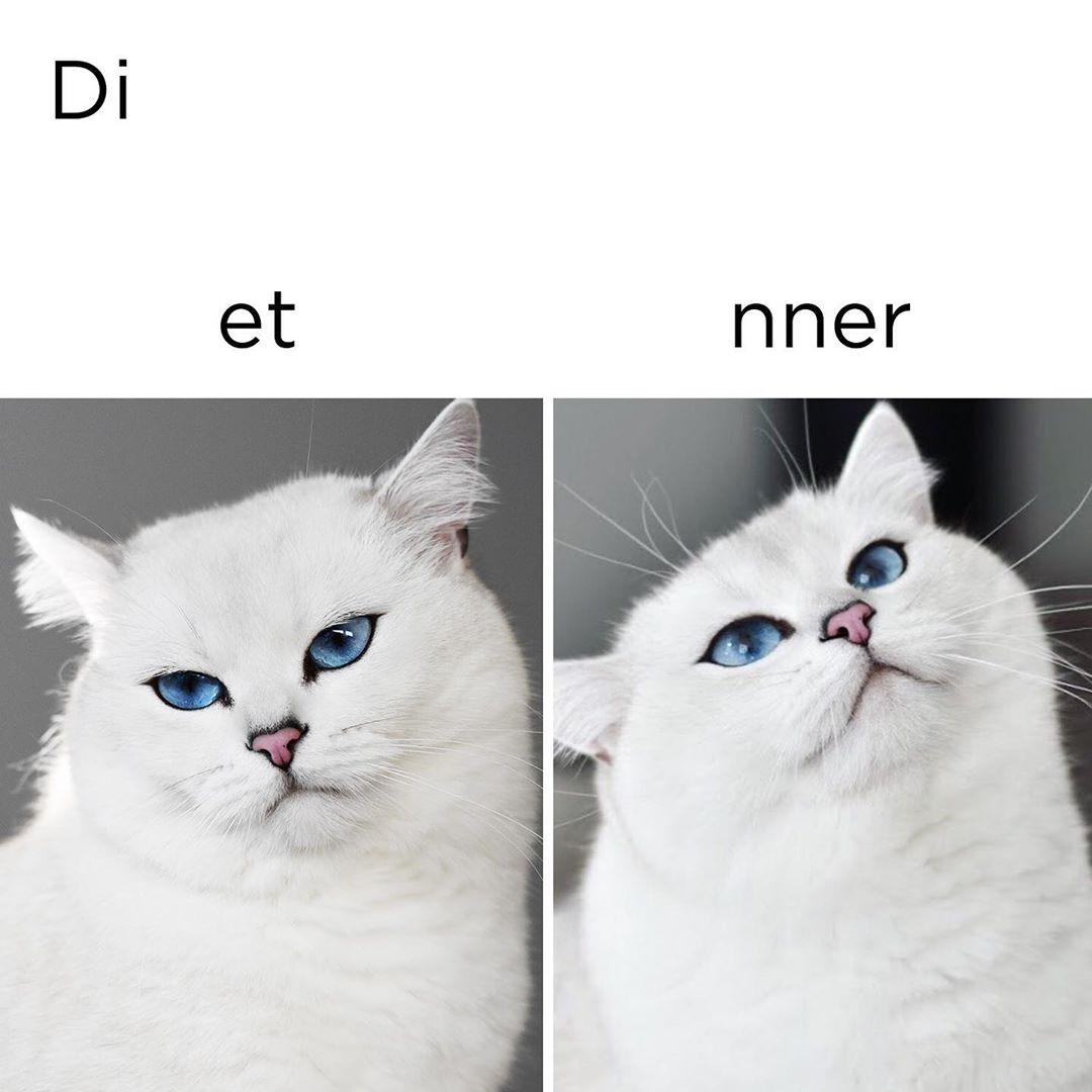 Коби-мем