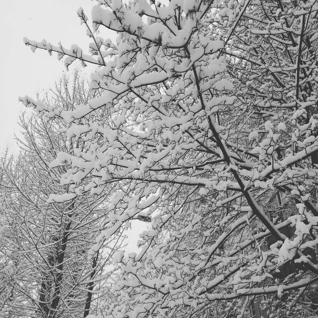 Москву снова засыпает снегом. #москва #беверли #бирюлевовосточное #снег #моямосква #snow #winter #moscow #зима2018